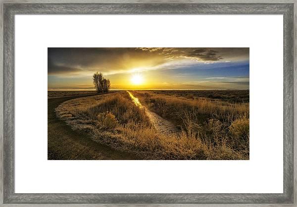 Sunrise At The Wildlife Refuge Framed Print by David Soldano