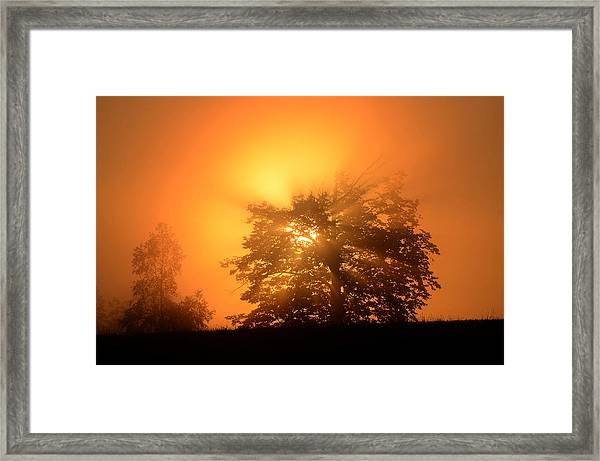 Sunrise In Fog Framed Print
