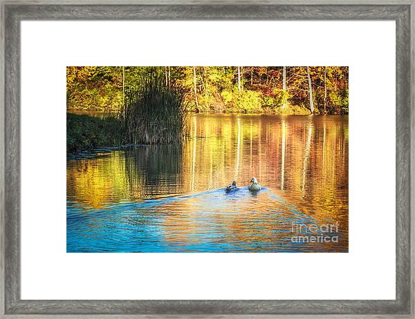 Sunrise Lake Rendezvous Framed Print