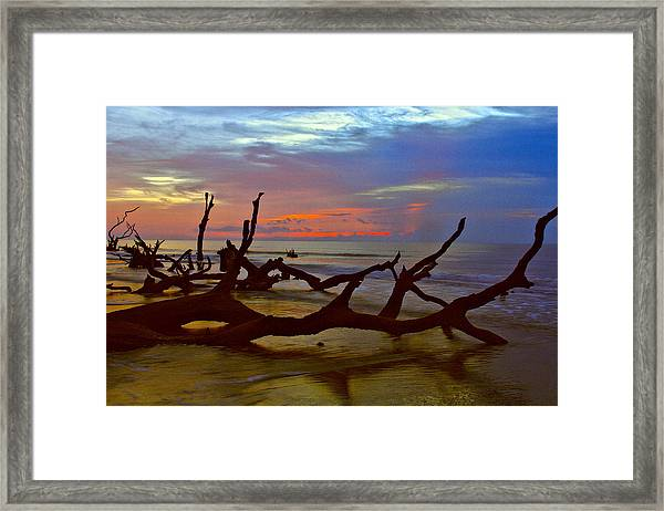 Sunrise On Bulls Island Framed Print