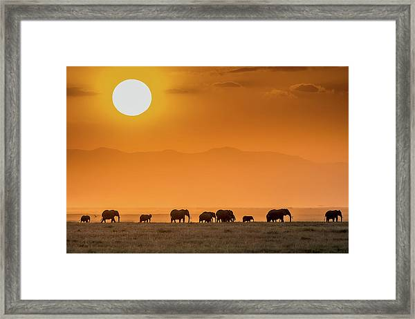 Sunrise Over Amboseli Framed Print by Jeffrey C. Sink