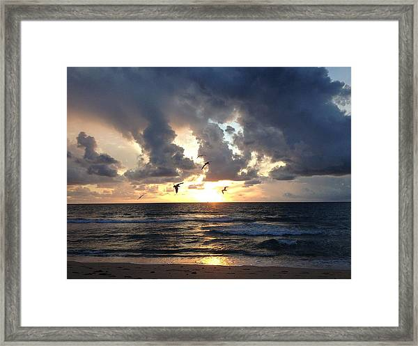 Framed Print featuring the photograph Sunrise Seagulls by Barbara Von Pagel