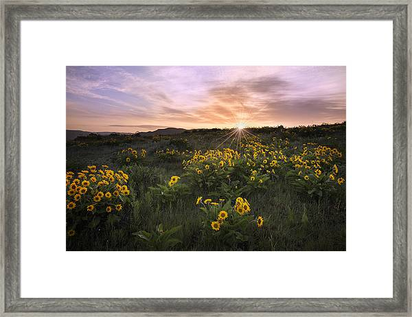 Sunrise Service Framed Print
