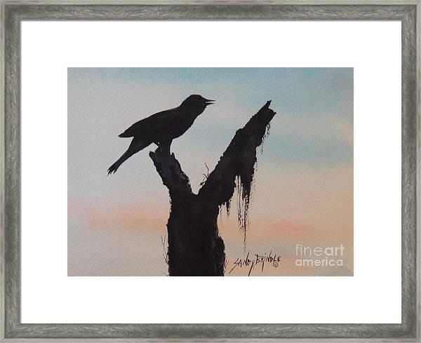 Sunrise Singer Framed Print