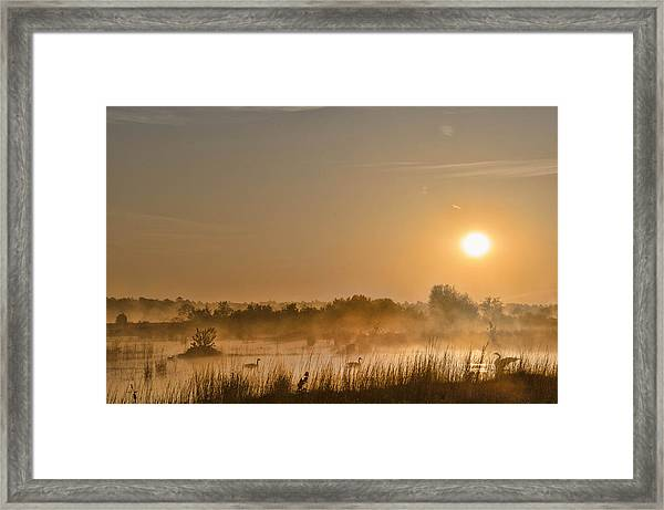Framed Print featuring the photograph Sunrise With The Geese by Beth Sawickie