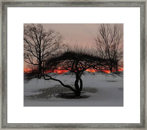 Sunroof Framed Print