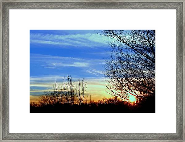 Sunset And 3 Birds Framed Print