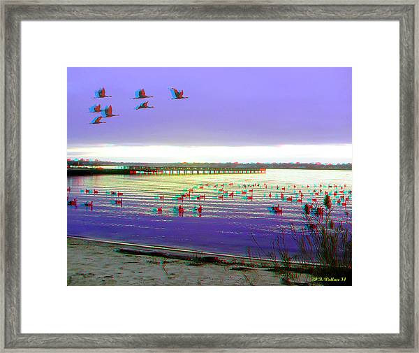 Sunset And Geese - Use Red-cyan 3d Glasses Framed Print