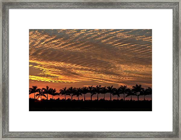 Sunset Florida Framed Print