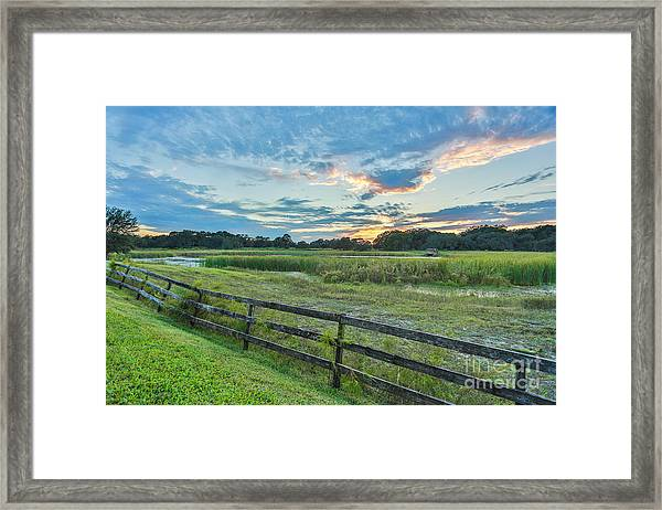 Sunset In Green Field Framed Print by Mina Isaac