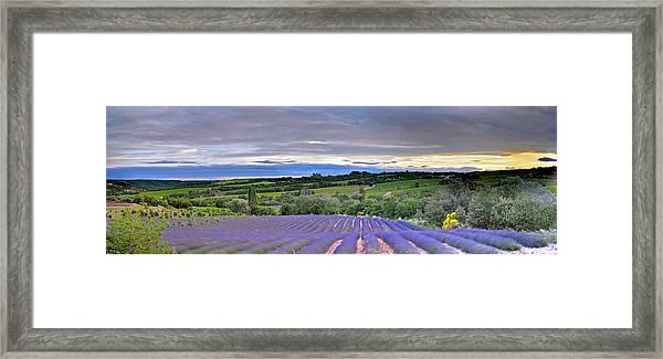 Sunset In Provence Framed Print