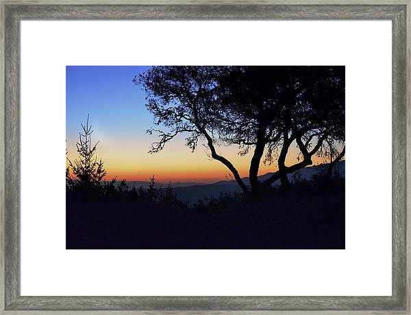 Sunset In Woodside  Framed Print