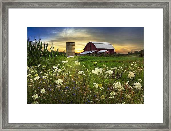 Sunset Lace Pastures Framed Print