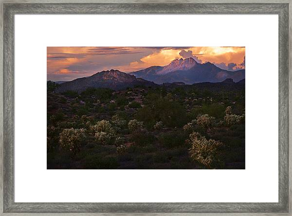 Sunset Lit Cactus Over Four Peaks Framed Print