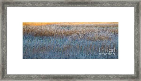 Sunset Marsh In Blue And Gold Framed Print