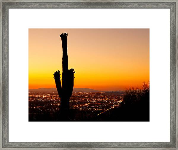 Sunset On Phoenix With Saguaro Cactus Framed Print