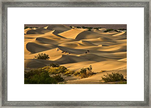 Sunset Over Mesquite Flat Dunes Framed Print