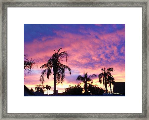 Sunset Over Palms Framed Print