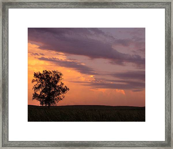 Sunset Sorbet II Framed Print by Sarah Boyd