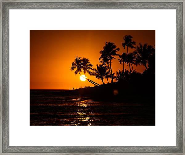 Sunset Through The Palm Trees Framed Print
