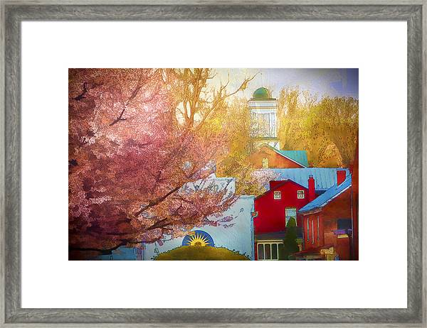 Sunshine In Springtime Framed Print