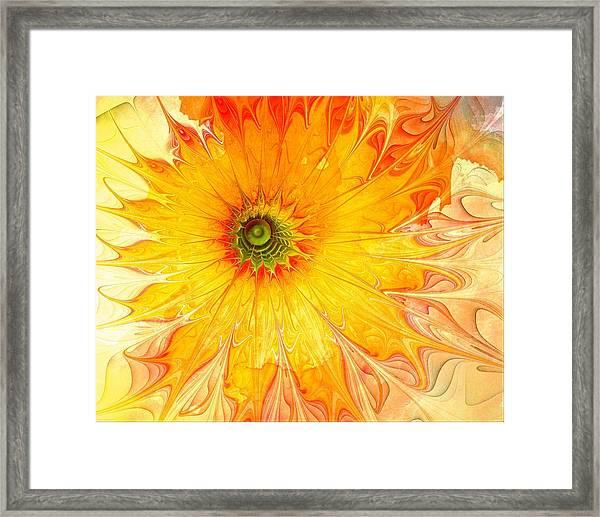 Sunshine Mine Framed Print