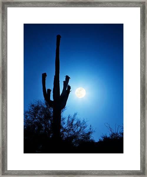 Super Full Moon With Saguaro Cactus In Phoenix Arizona Framed Print