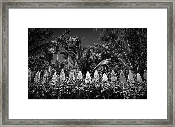 Surf Board Fence Maui Hawaii Black And White Framed Print