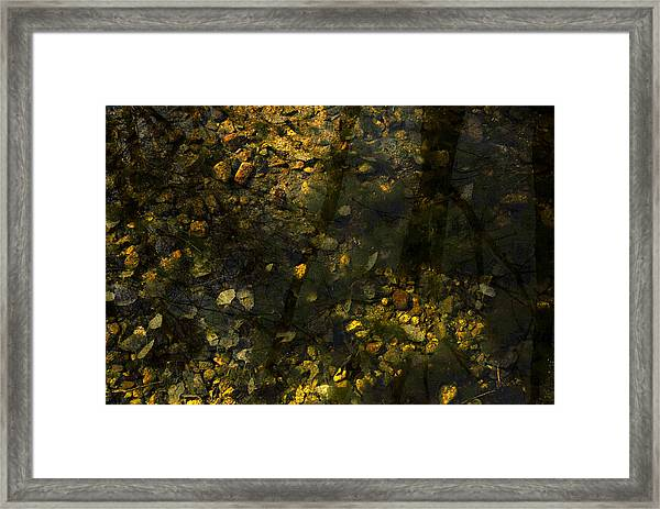 Surface Tension Framed Print