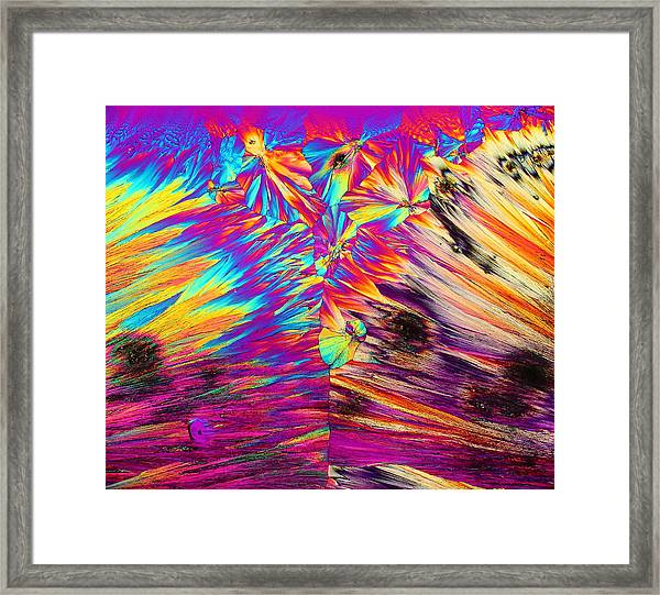 Surfin' Safari Framed Print
