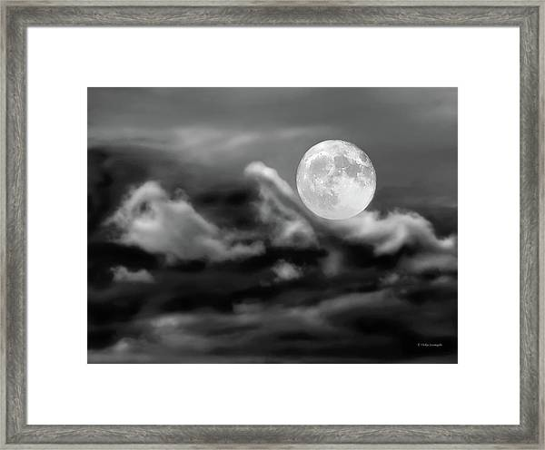 Surfing The Night  Framed Print