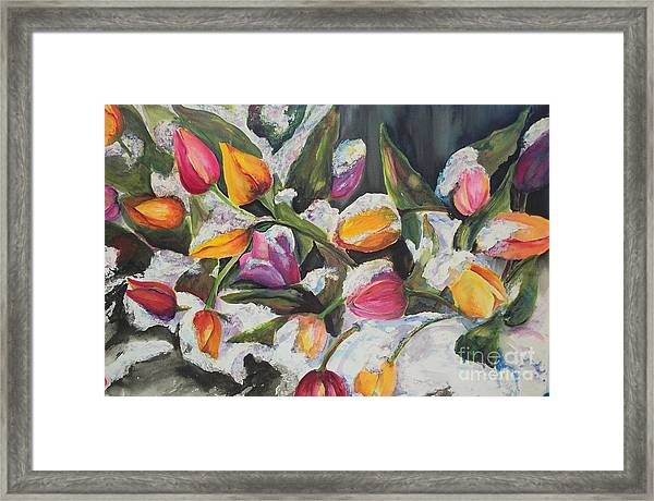 Surprise Spring Snow Framed Print