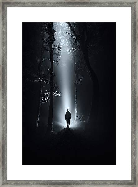 Surreal Forest At Night Framed Print