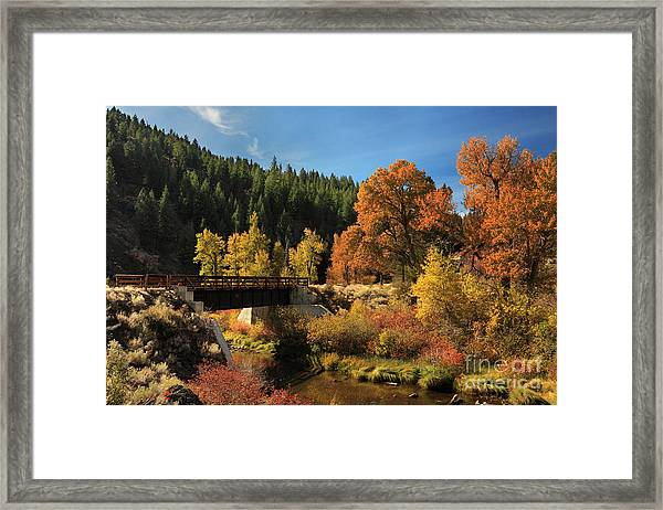 Susan River Bridge On The Bizz 2 Framed Print