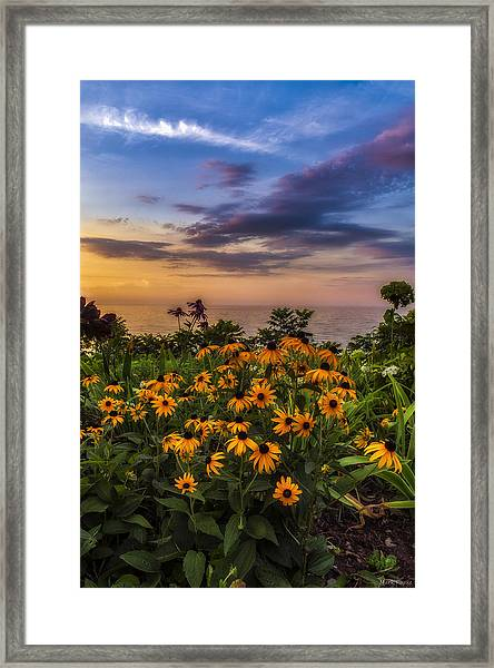Susan's Sunset Framed Print