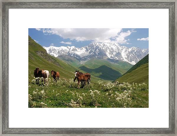 Svaneti  Framed Print