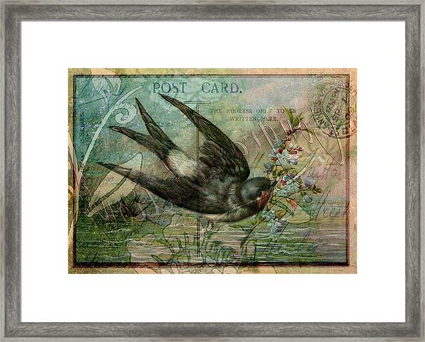 Swallow With Flowers Framed Print