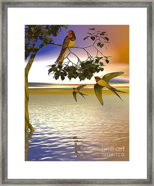 Swallows At Sundown Framed Print by Sandra Bauser Digital Art