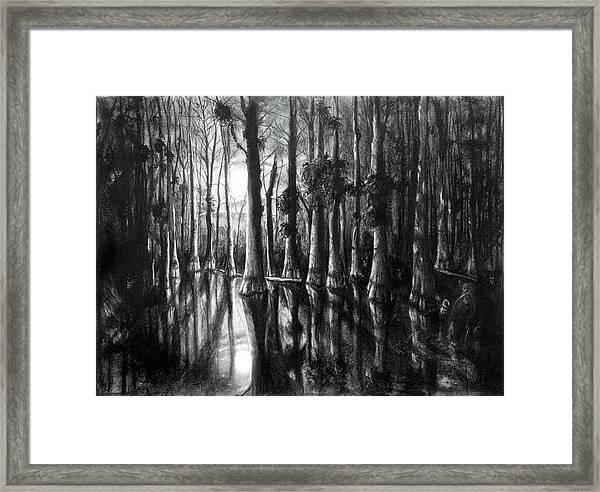 Swamp At Night Framed Print