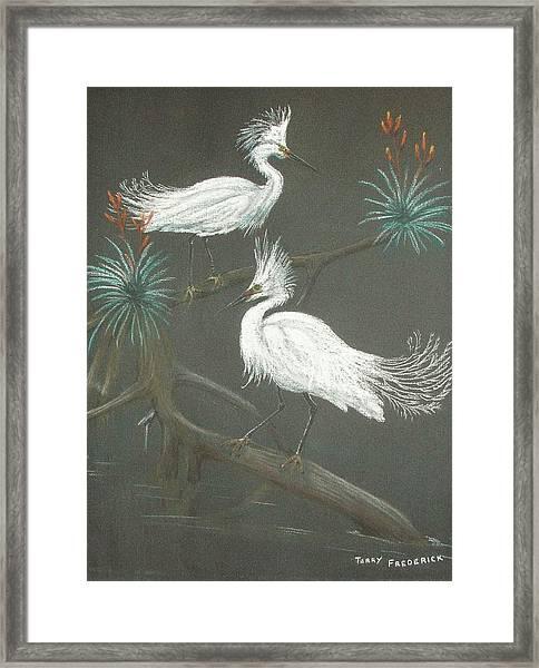 Swampbirds Framed Print