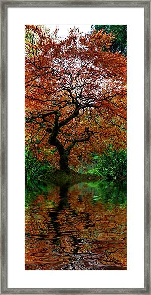 Swamped Japanese Framed Print