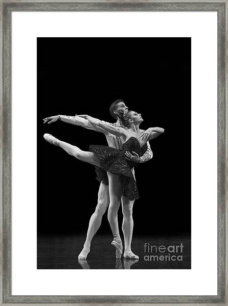 Swan Lake  Black Adagio  Russia  Framed Print