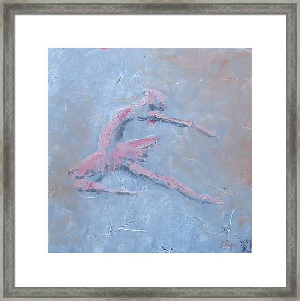 Swan Lake II Framed Print