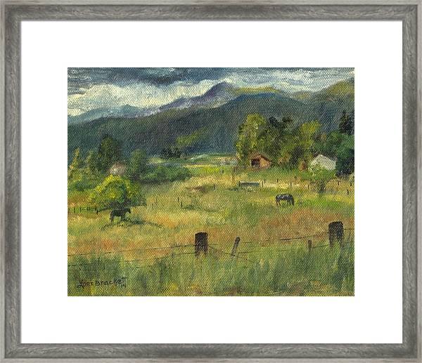 Swan Valley Residents Framed Print