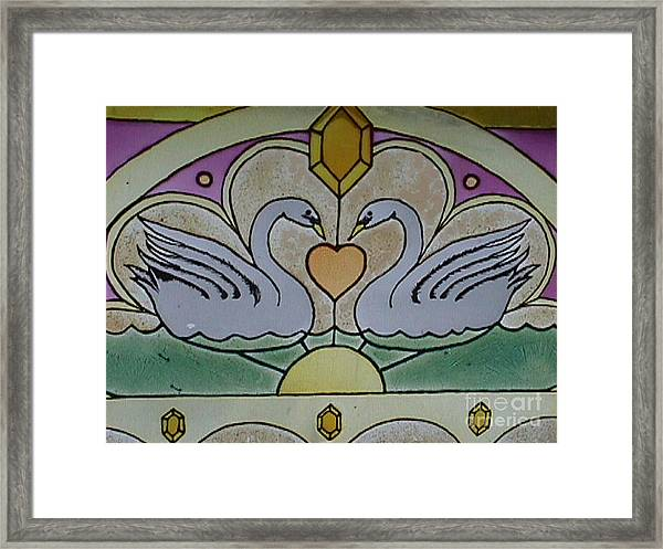 Swan Window Framed Print