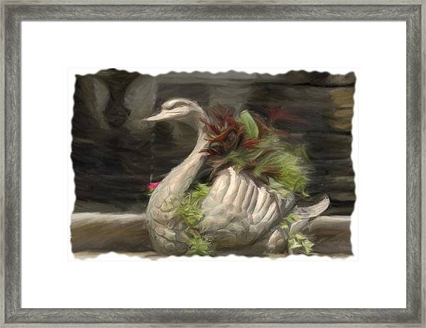 Swan With Beautiful Flowers Framed Print