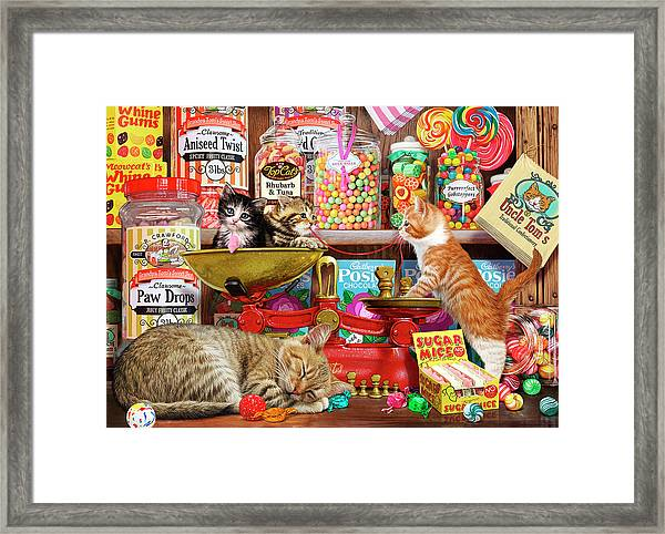 Sweet Shop Kittens Framed Print