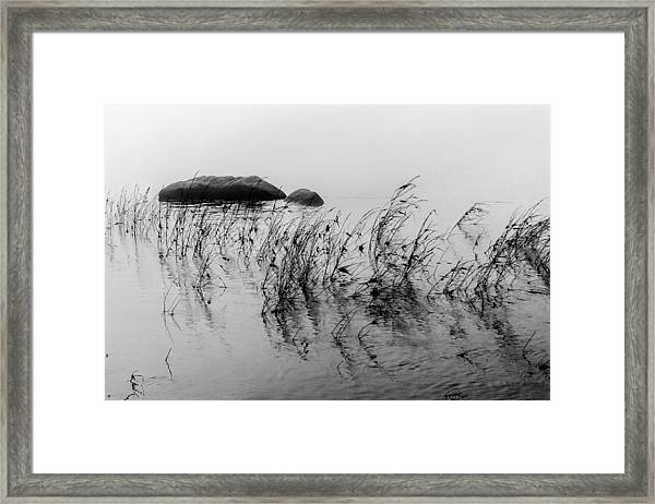 Sweet Water Framed Print