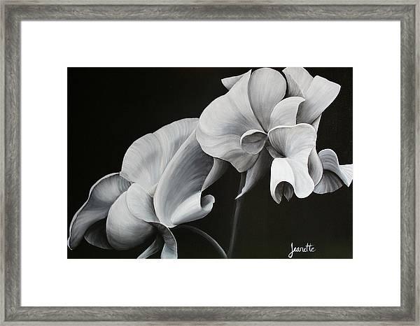 Sweetpea Blossoms Framed Print