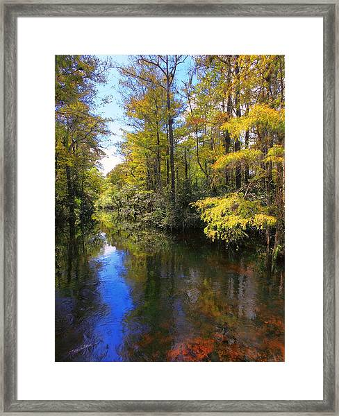 Sweetwater Strand - 3 Framed Print